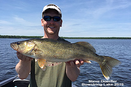 Great Walleye Fishing